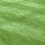 Artificial Lawn Prices in the UK
