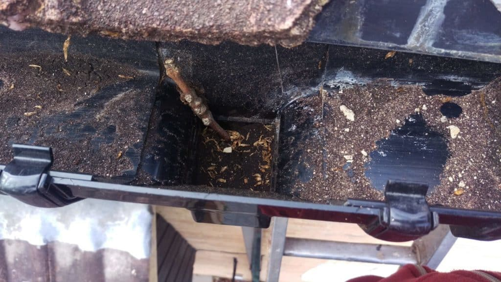 Blocked gutter pipe