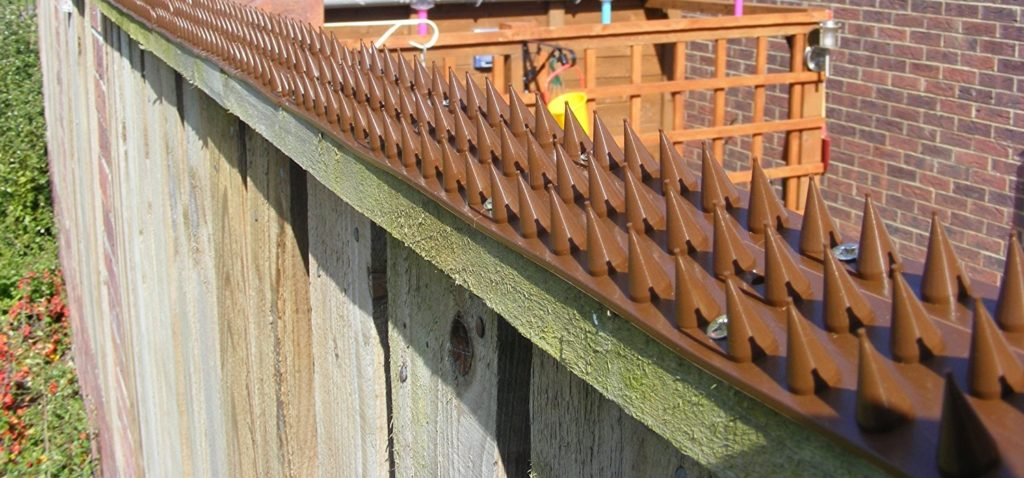 Wall spikes to prevent cats from entering the garden