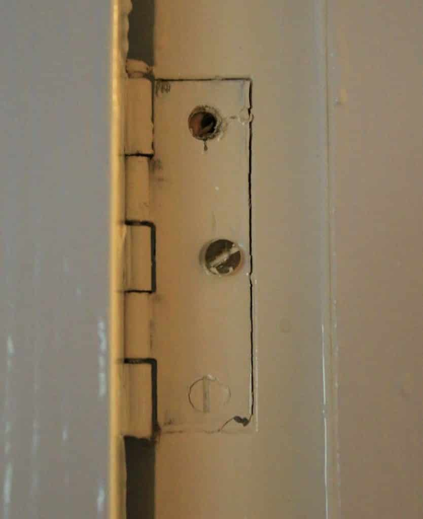 Door hinge screws