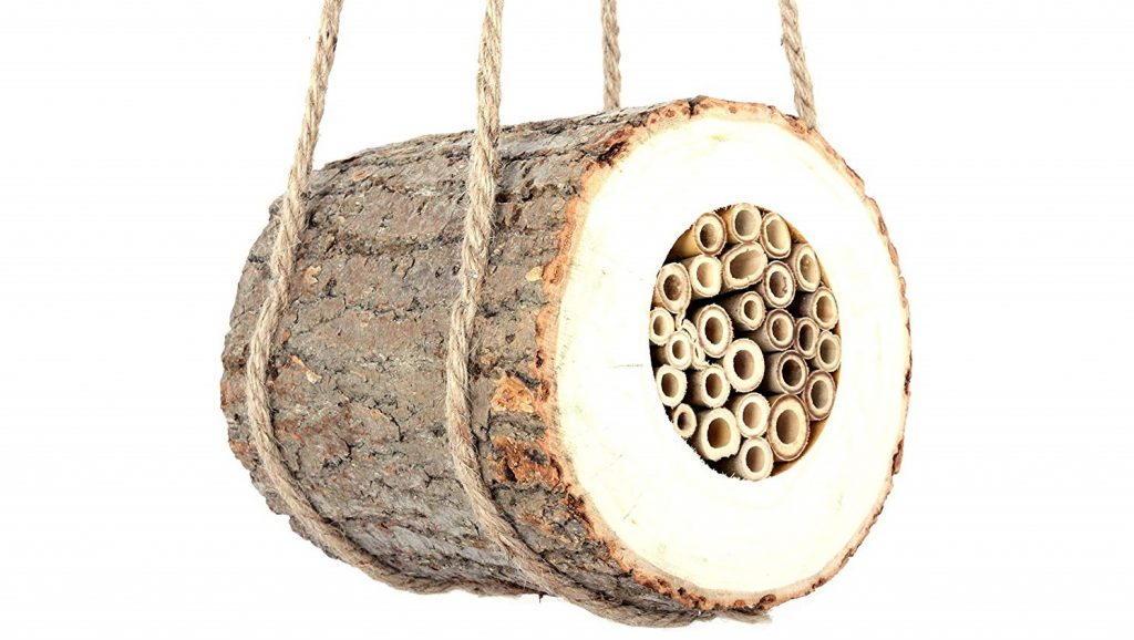 Bee home/log