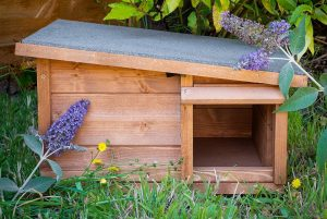 The Best Pre-Made Hedgehog Houses